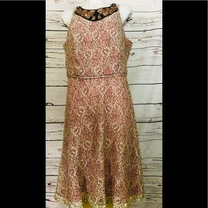 Lovely by Adrianna Papell Lace Embellished Dress